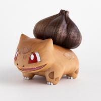 Bulbasaur carving