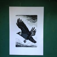 'Covid Corvid' Reduction Woodcut